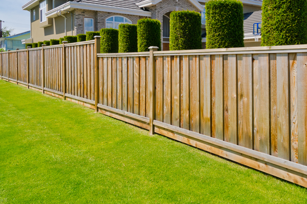 Feather Edge and <br> Wooden Fencing